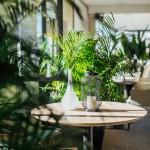 photographe restaurant cannes (5)