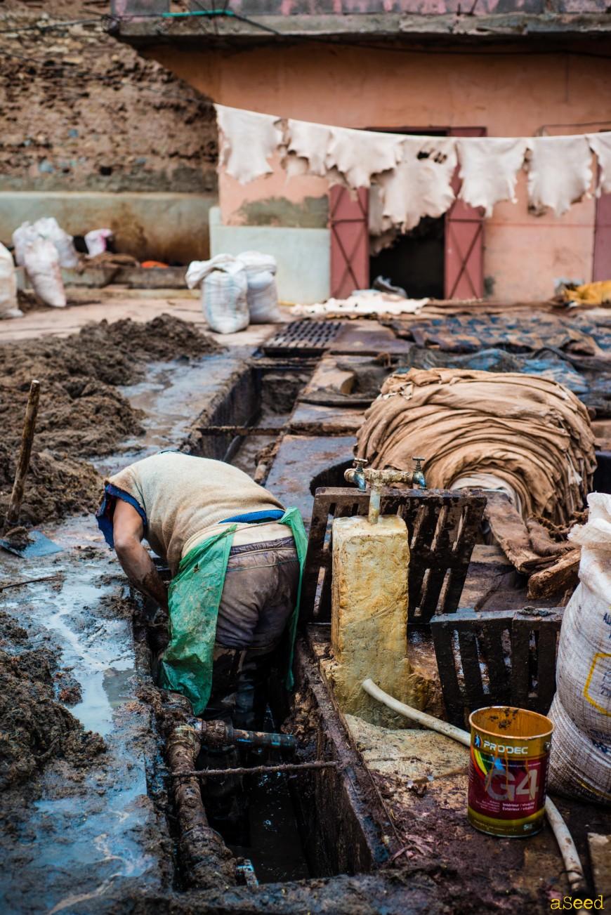 Les tanneurs de Marrakech