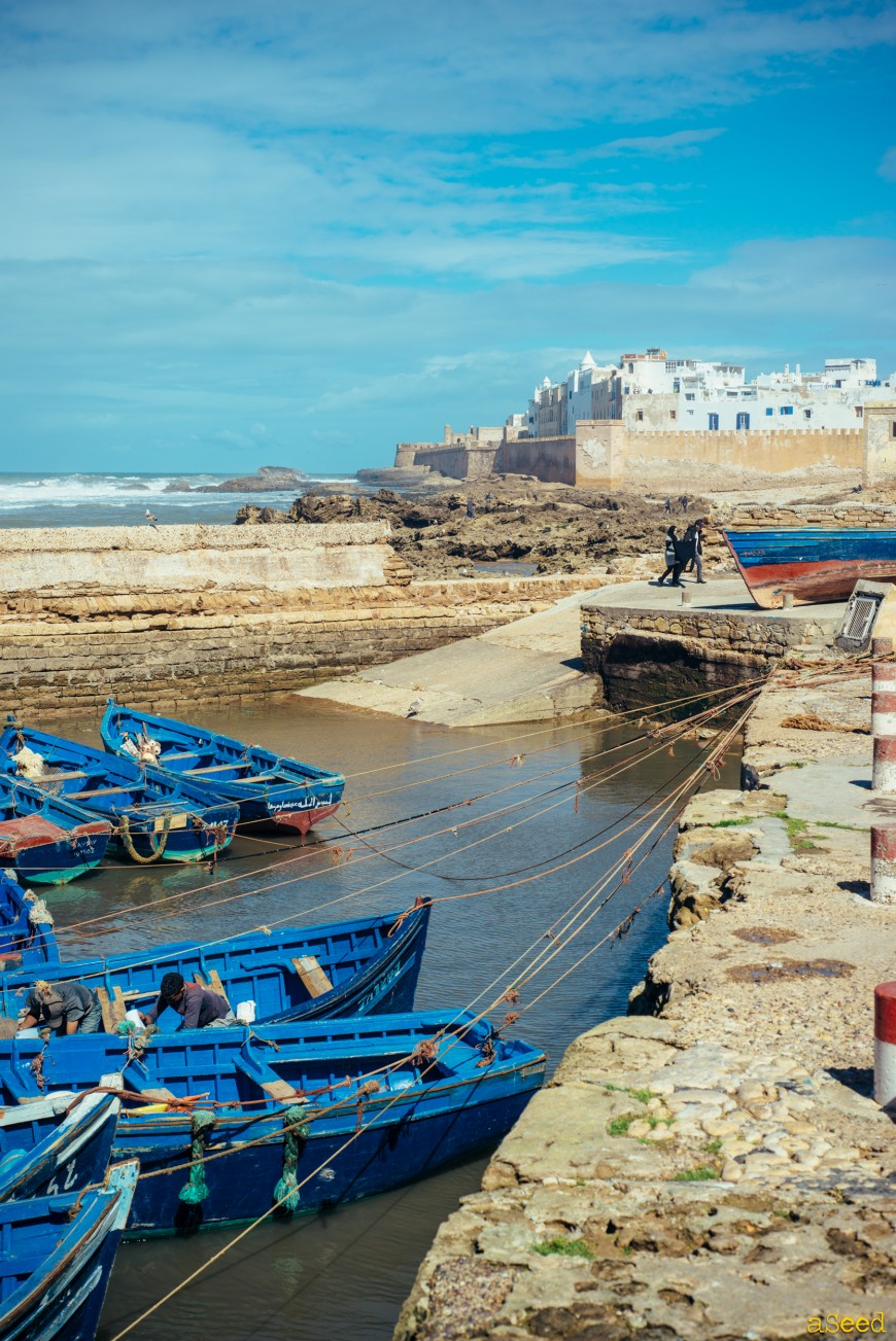 More from Morocco (with Love)