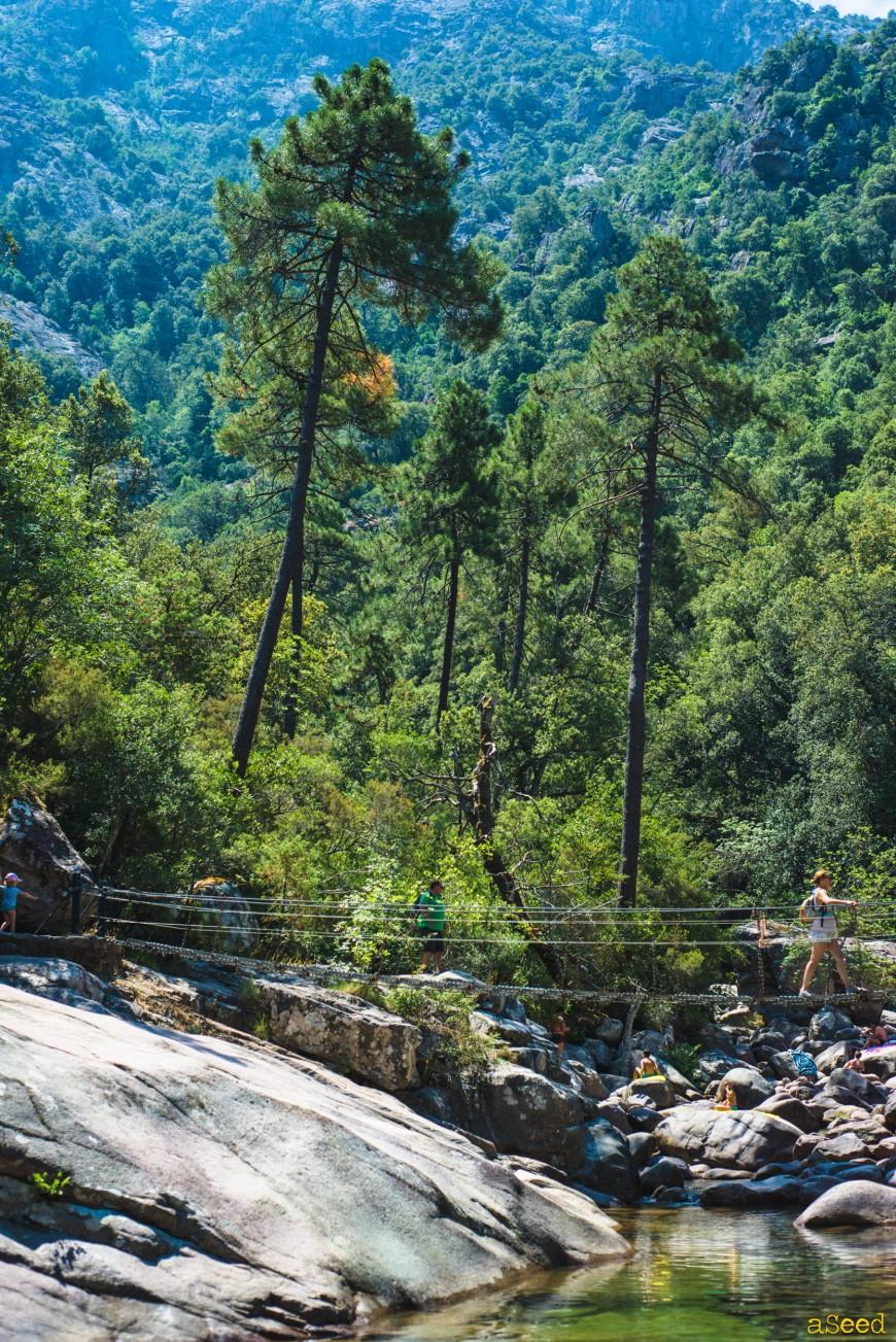 Virée en Corse 2015