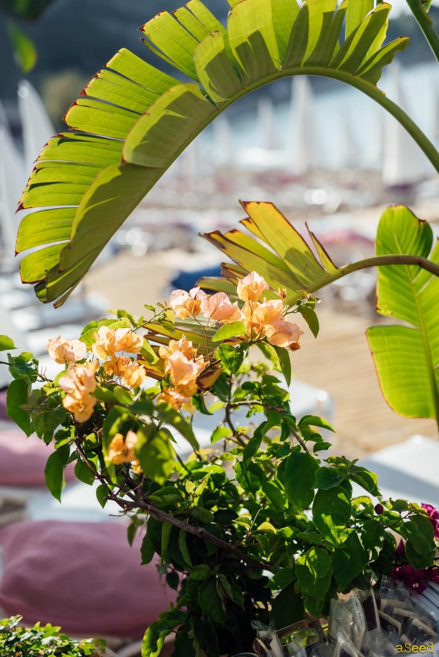 Photographe restaurant Villefrance-sur-mer 06 (2)
