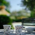 Photographe villa provence cote d'azur (17)