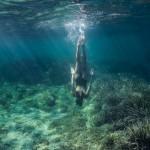 Séance photo underwater Nice Cannes Monaco (11)