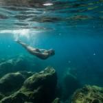 Séance photo underwater Nice Cannes Monaco (28)