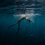 Séance photo underwater Monaco