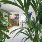 Studio photo Nice Pineapple (3)